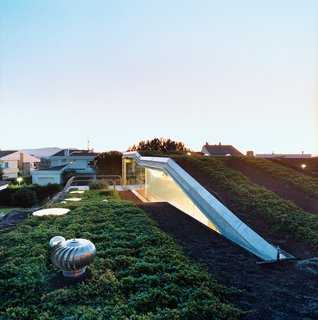 Is it Easy Being Green? The Costs and Benefits of Green Roofs