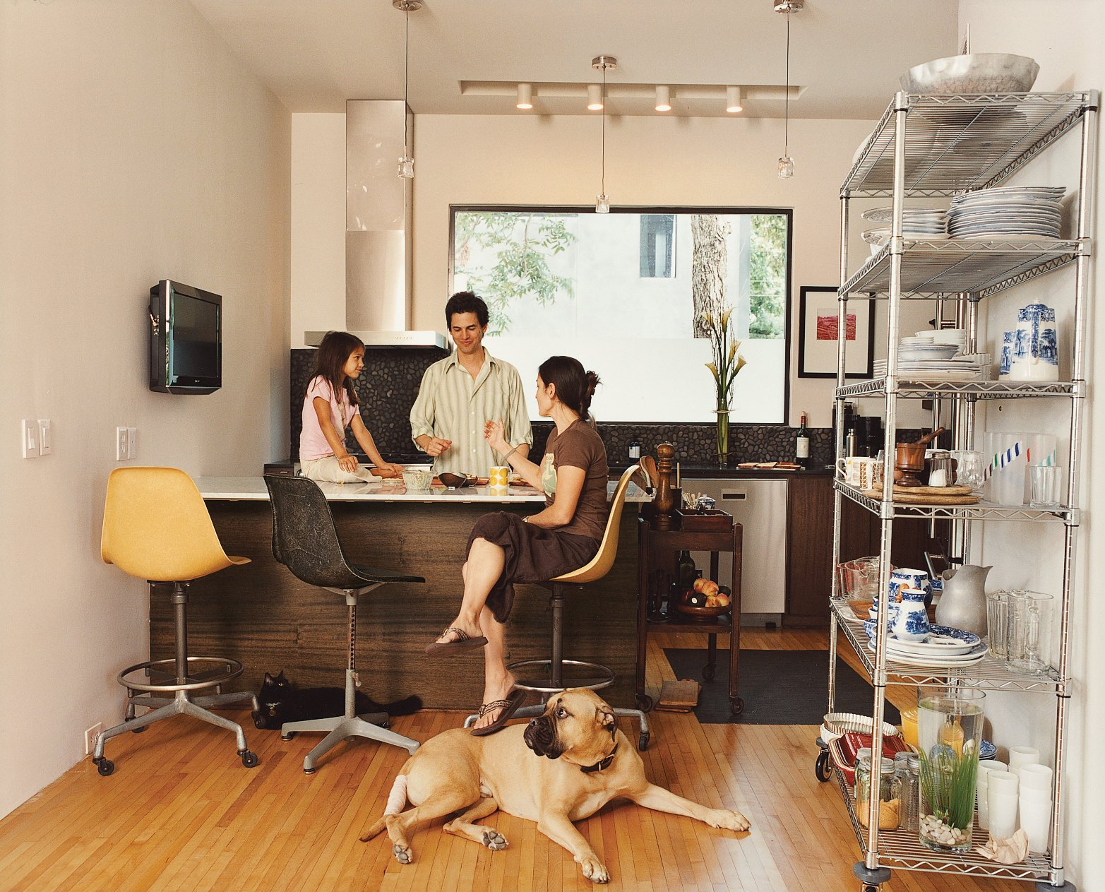 Inside the condos, the Fords' penchant for rescuing and renewing is evident, from the many refugee animals that contentedly lounge about the house, to the salvaged gym floors in the kitchen.  Photo 4 of 8 in Houston, We've Solved a Problem