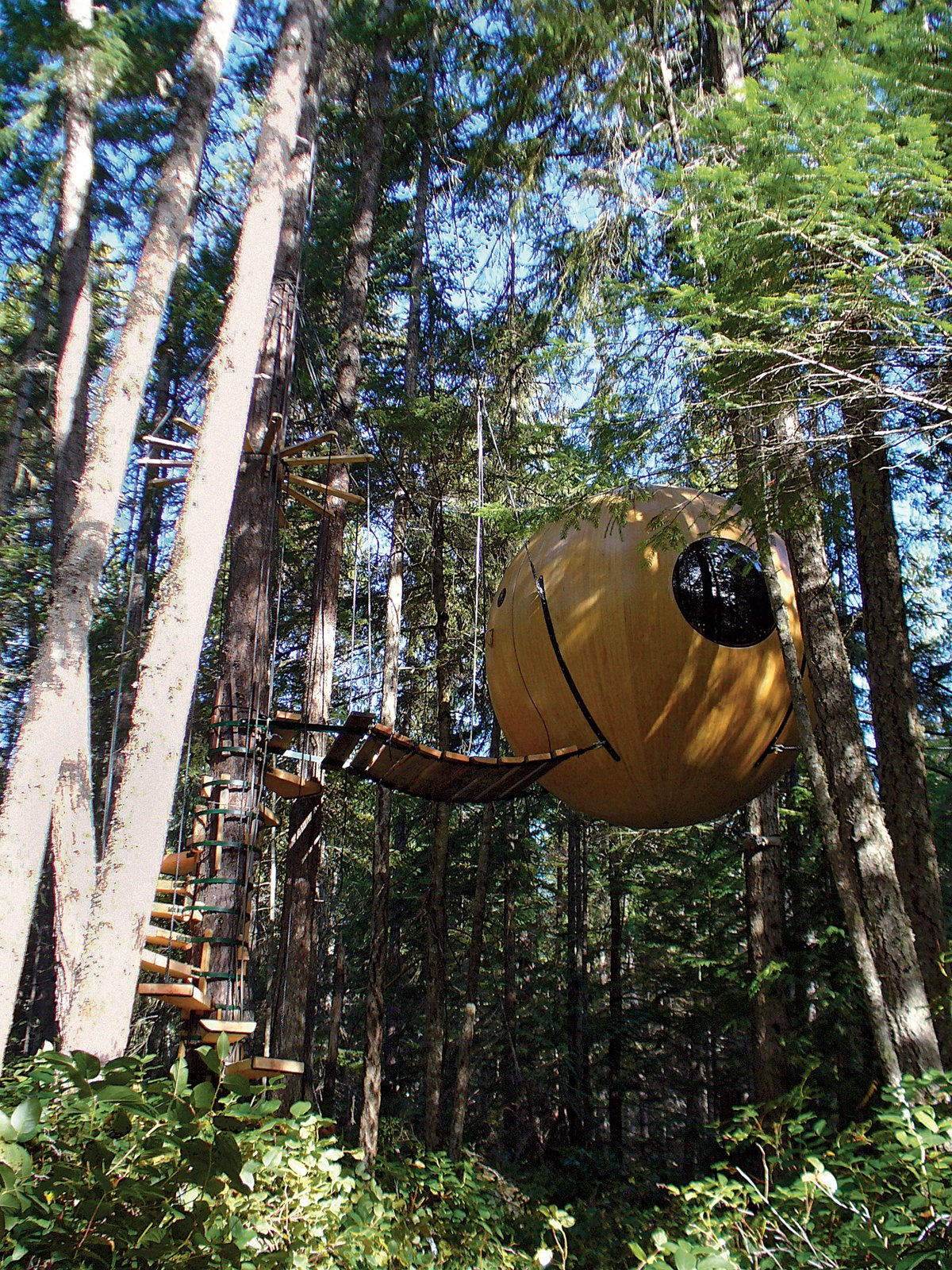 """British Columbia–based Tom Chudleigh designed the Free Spirit Sphere as a have-your-cake-and-eat-it-too tree house that combines the wonder of being airborne with all manner of earthly comforts.  Handcrafted of wood or fiberglass, this lavish ten-foot-six-inch-diameter sphere is fully wired to accommodate a microwave, space heater, refrigerator, TV, Clapper—whatever. And it's plumbed for a kitchen sink. Retractable beds sleep up to four people.   But if the point is to surround one's self with all mod cons, why not just rent a condo in Barstow? """"When you're up in the trees,"""" Chudleigh says, somewhat evasively, """"you really get the sense that you are just floating up there, that you're in a different world."""" This sensation is produced by four flexible ropes that connect to the sides of the sphere, allowing it to suspend freely above the ground and move with the whim of the forest breeze or branches, intimately connecting the Free Spirit Sphere occupant with the surroundings. """"It's a really healing place up here.""""   Chudleigh has built four spheres so far and is on his way to Australia to build four more. Prices range from $45,000 for the fiberglass to $150,000 for the handcrafted wood sphere. """"You think of conventional buildings as having walls, straight lines, color patterns,"""" says Chudleigh. """"In these spheres you are completely removed from that: All walls are merged into one, you are in the air, connected to it, detached from everything familiar—it's a total escape from the conventional world.""""  br>  br>  Photograph by Gregor MacLean.  Photo 10 of 25 in Photo Essay: Enchanting Tree Houses from The High Life"""
