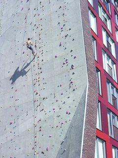 Dormitory Climbing Wall