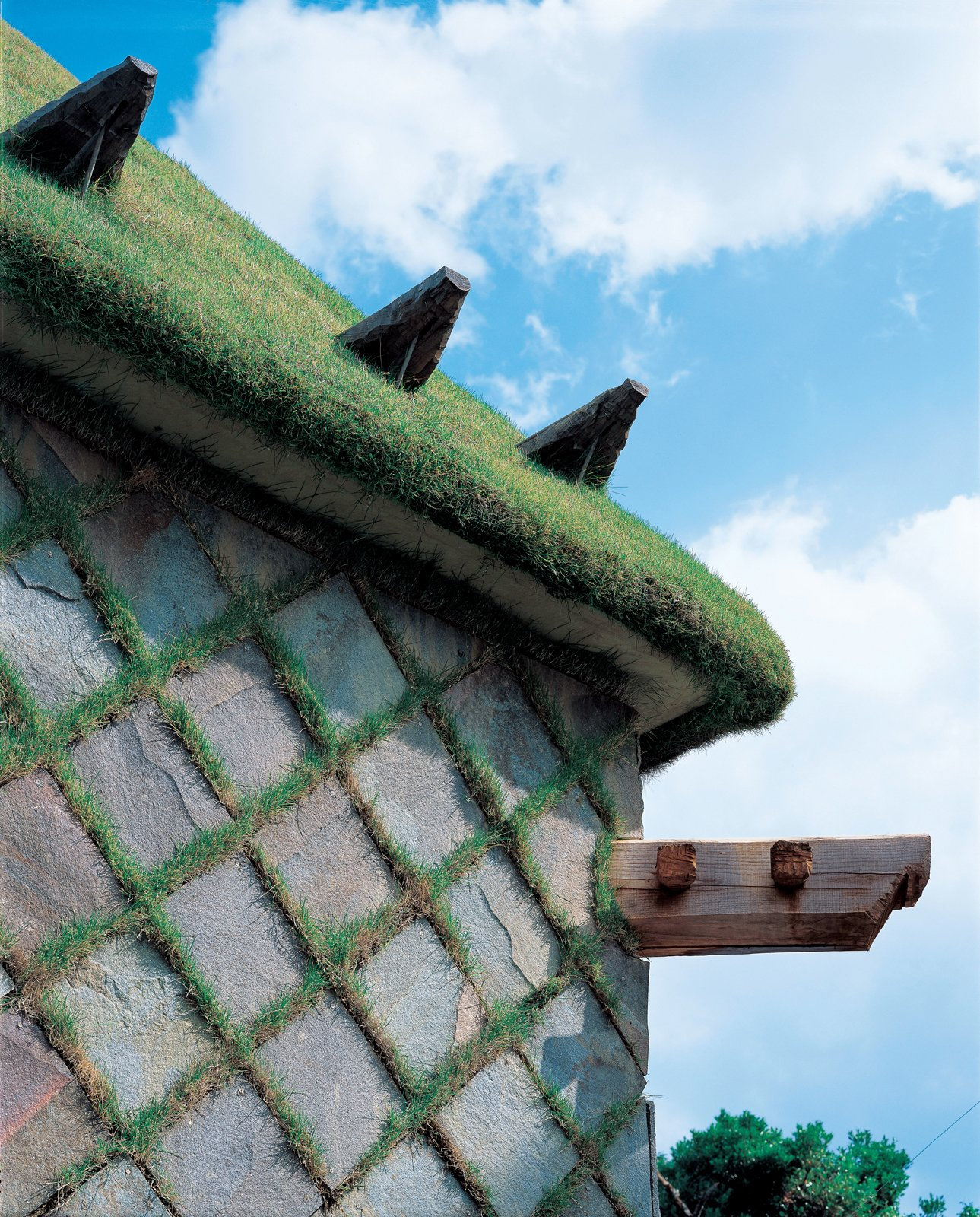 For Camellia Castle, which houses a sake brewery, Fujimori designed a grass-covered roof and a cladding comprised of grass-and-stone checkerboard.  Photo 22 of 23 in Terunobu Fujimori