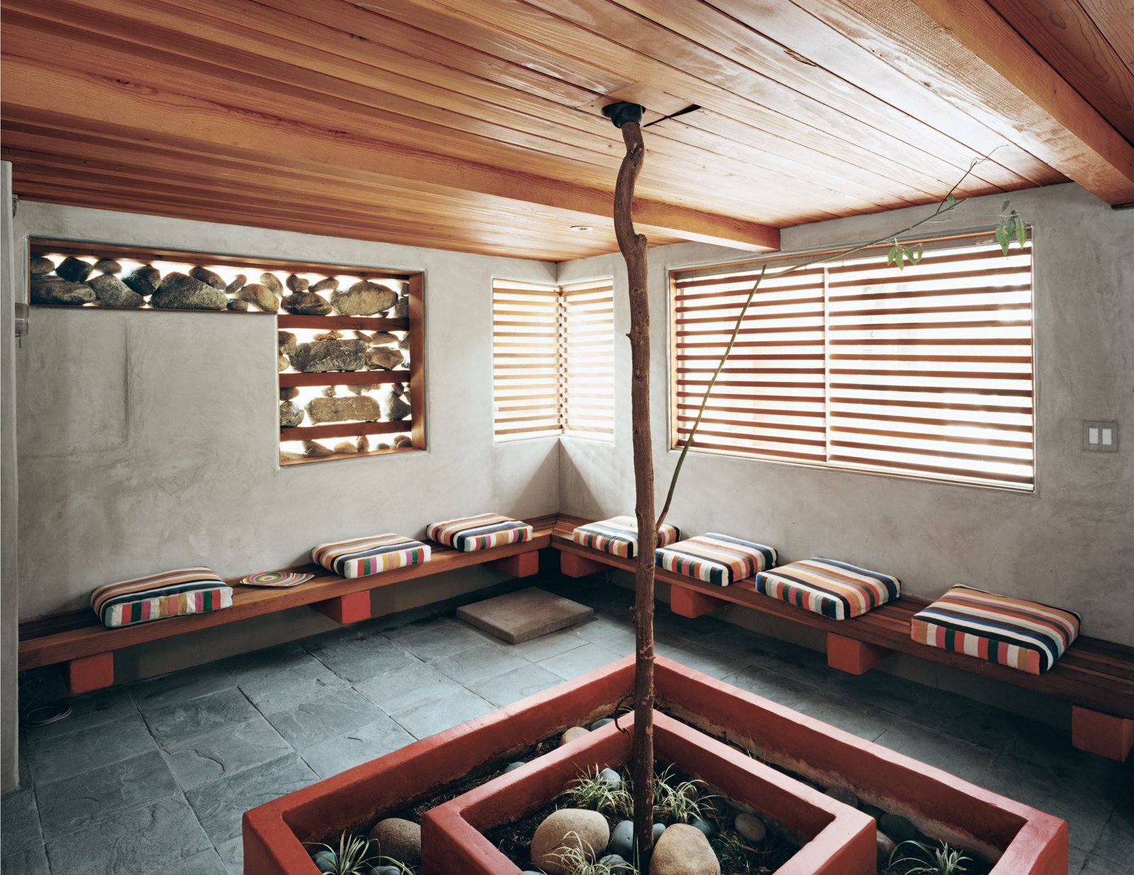 A young, drought-tolerant Tristania conferta (also known as Australian brush box tree) grows up through the chill-out room under the deck at the rear of the house.  Photo 6 of 10 in Casa Study House #1