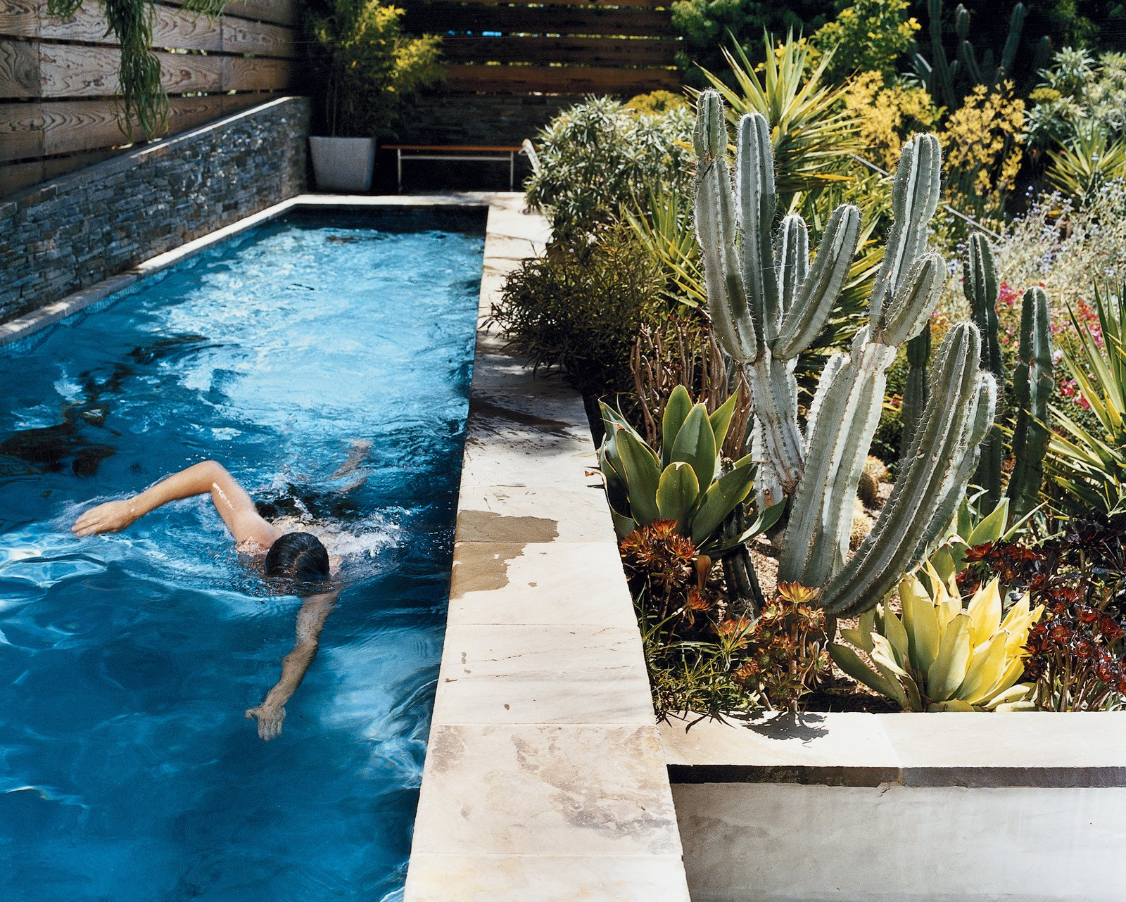 Outdoor, Small Pools, Tubs, Shower, Swimming Pools, Tubs, Shower, Lap Pools, Tubs, Shower, and Back Yard Day takes a swim in a new lap pool framed by a lush Southern California garden. The lower wall next to the pool is made from stacked Pennsylvania bluestone, which was used for all exterior stone as well.  Pools from Way Out West