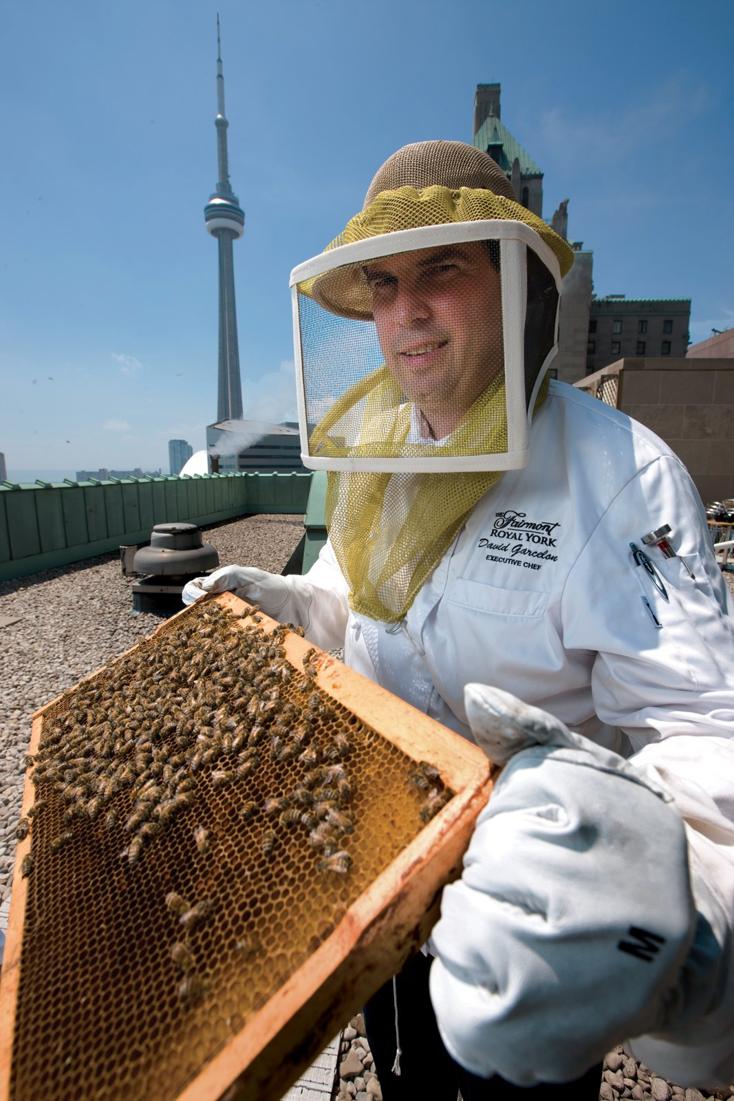 Fairmont Royal York Hotel executive chef David Garcelon takes instruction from beekeepers on the handling of the three new hives on the hotel's roof, just beside the roof-top herb garden. Photograph by Norm Betts.  Photo 1 of 1 in Hive Design