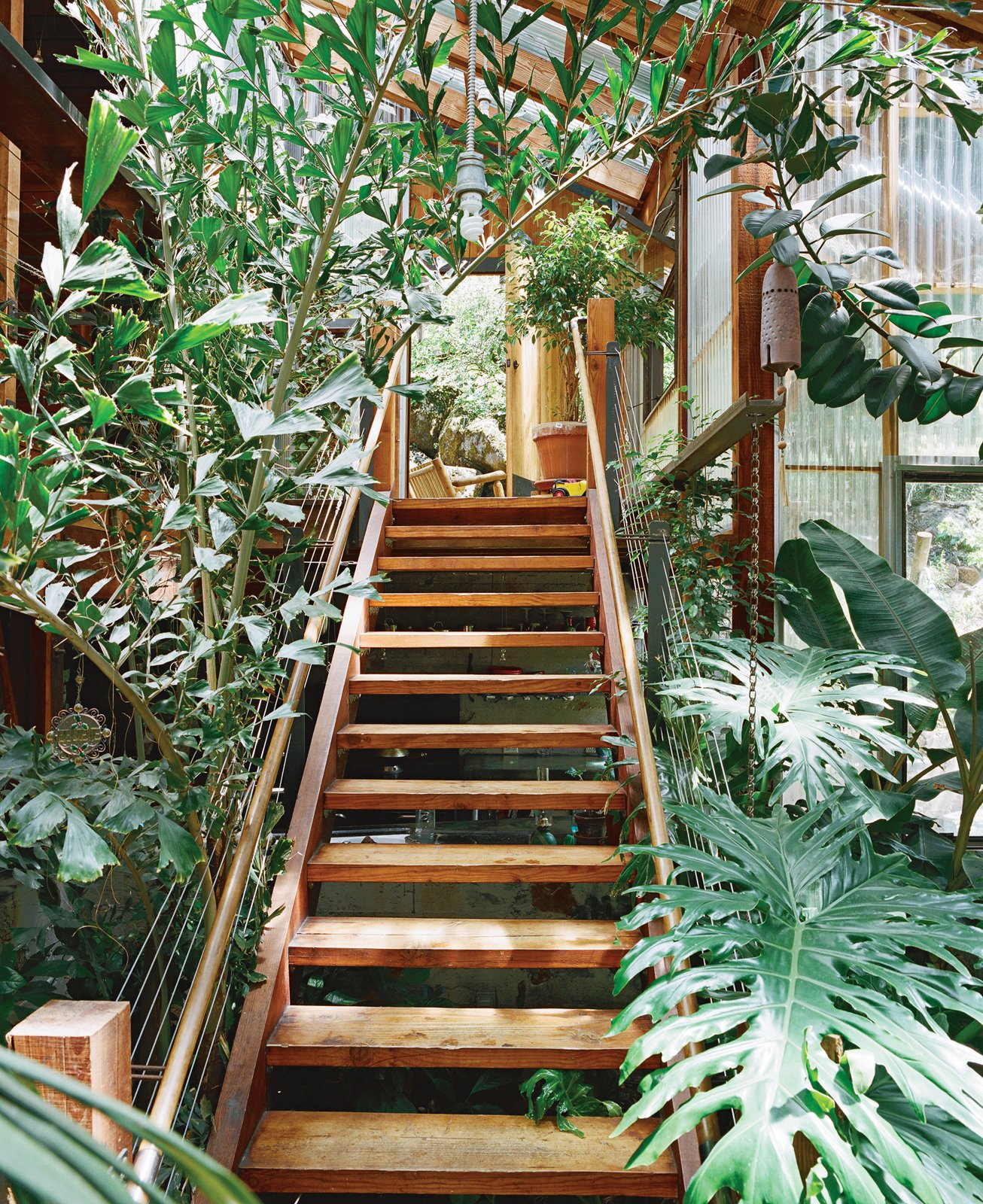 Though all the plants are mundane home-center varieties, they grow to uncanny heights in the moist, sunny environment. Tagged: Staircase, Wood Tread, and Wood Railing.  Photo 2 of 13 in Diamond in the Rough (and Ready)