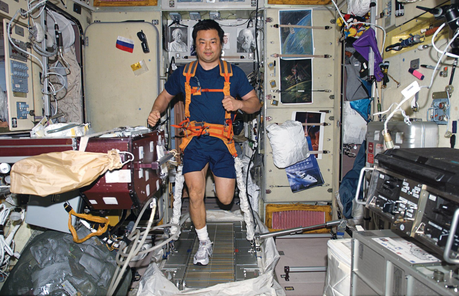 """Space life doesn't differ much from the daily grind on Earth—–it just demands more attention. Leroy Chiao's daily workout requires tying on both sneakers and   a bungee harness before putting in miles on the TVIS (""""treadmill vibration isolation system""""). Image courtesy of NASA.  Photo 12 of 32 in Space Living: Astro Home"""