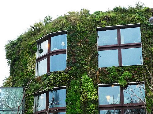 The vertical garden at  the Musée du Quai Branly in Paris, France, designed by Patrick Blanc.  Photo 1 of 4 in Events this Weekend: 2.18-21