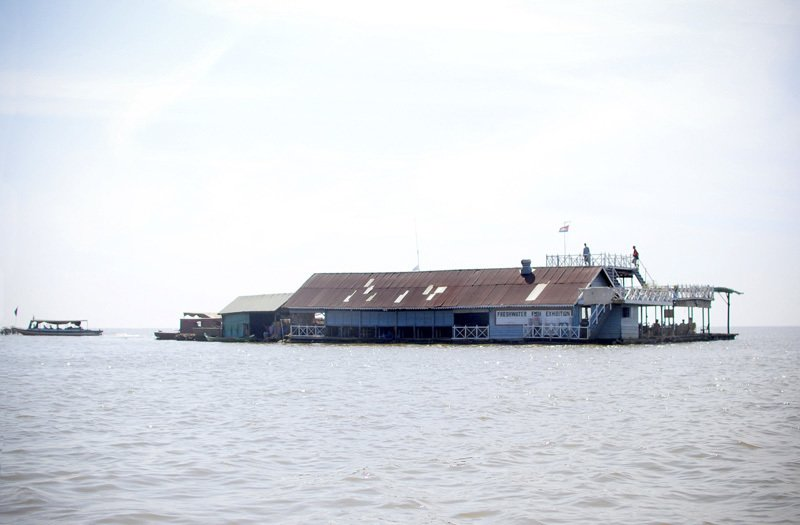This is the 'Freshwater Fish Exhibition' - a fish farm and a large gathering hall. All floating villages on the Tonle Sap lake depend on fishing to survive. The Tonle Sap is the largest inland body of water in Southeast Asia and is a true nutritional bounty -- its annual fish catch provides Cambodia with two-thirds of its protein.  Environmentalists, however, are worried about the alarming deforestation of the surrounding flood forests, which is destroying wet-season fish habitats.  Living on Water: Floating Villages by Tiffany Chu