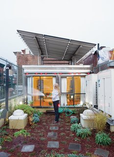 The Weiners' first stab at a decorative green roof went awry when workers installed the fabric membrane incorrectly; the plants didn't thrive, and   soil leached down the drain, causing a backup in the yard below. But with the help of an artist friend—–and avid gardener—–they successfully brought a piece of cultivated wildness, including hardy flora like creeping thyme, honeysuckle, hops, and kiwi, to their roof.