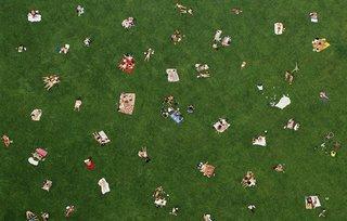 Sheep's Meadow. New York City