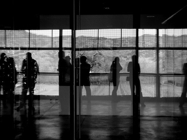 Reflective floor-to-ceiling glass is used for the interior walls, allowing the vineyards to constantly be in view.  Photo 7 of 9 in The Stealth Winery