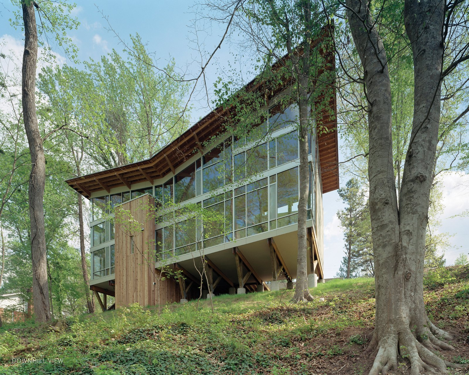 The house is perched on nine broad wood trusses to avoid cutting a single tree. The trusses also permit air and water to flow under the house, preserving the hydrology. The butterfly-shaped roof opens views to the creek and funnels rainwater into a collection system.  Photo 23 of 30 in Triangle House Tours