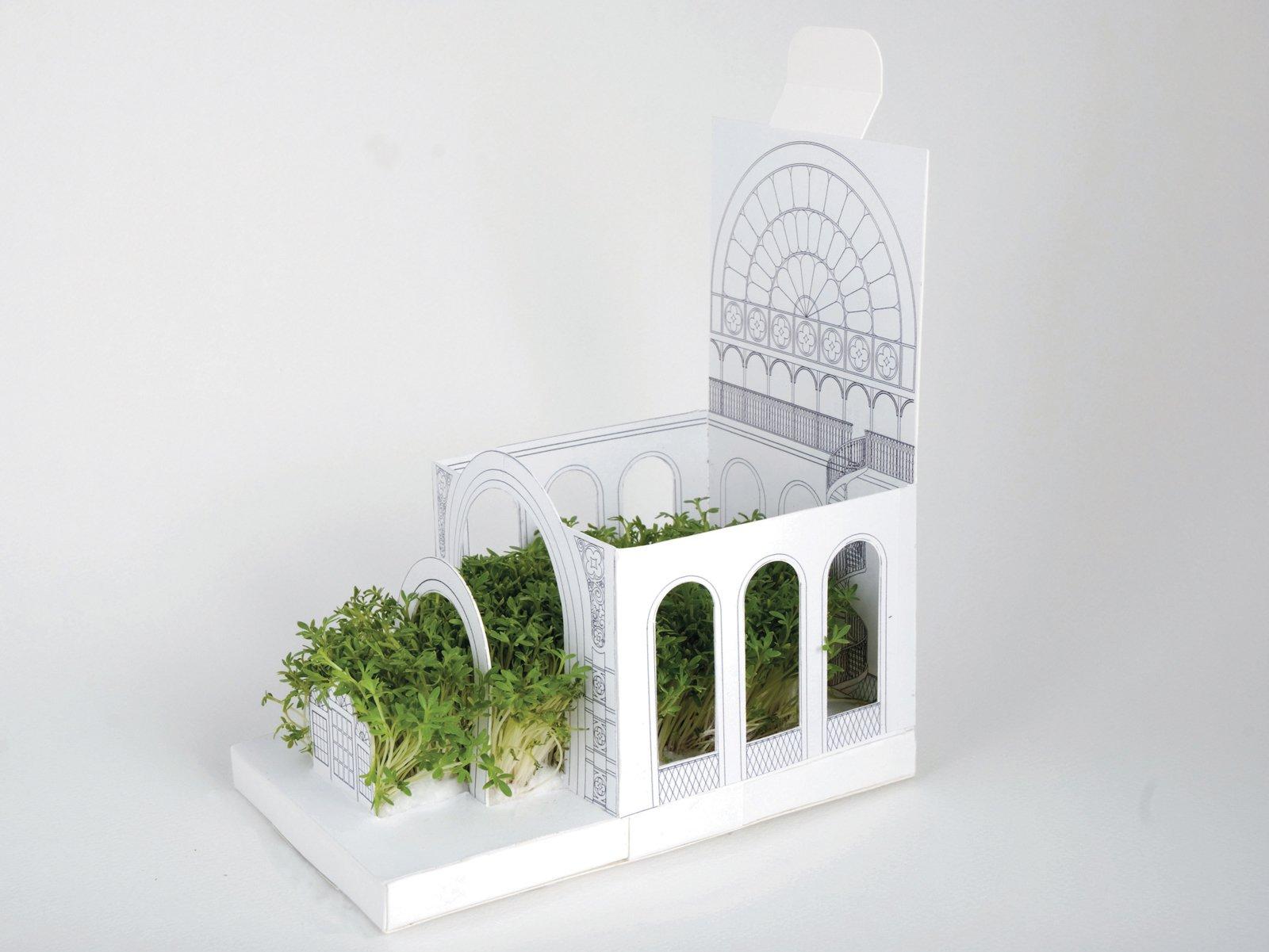 "Botanical Carden by Postcarden  Search ""전주오피《《www.MAT55.com》》⊀달밤⊁대비∥전주오피ಓ전주룸사롱ꌛ전주출장ꌙ전주Hugetelꏎ전주업소✘전주안마"" from Outside the Box: Cardboard Design"