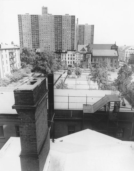 "The modernist towers of University Terrace soar above the nineteenth-century landscape. Title I developments like this sparked local efforts to protect ""Clinton Hill"" from urban renewal. World-Telegram & Sun, October 5 1964. (courtesy of the Library of Congress, Prints & Photographs Division, NYTWT&S Collection)"