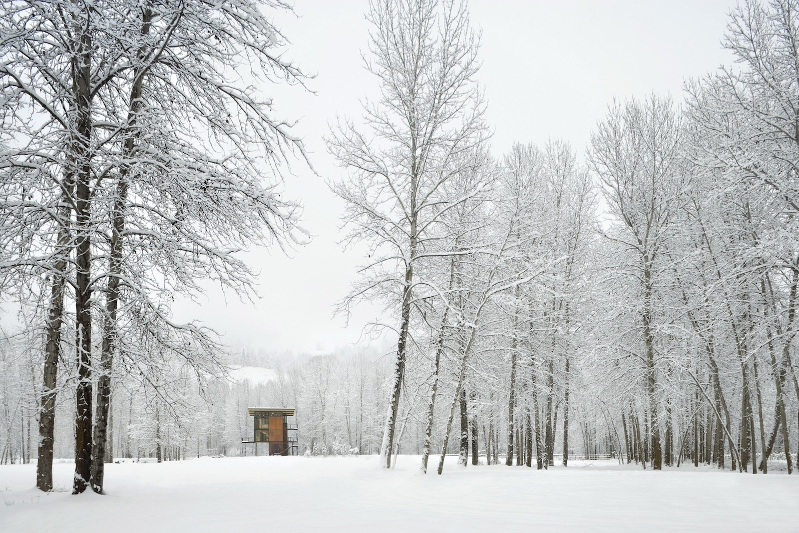 Delta Shelter in the snow. Photo by Benjamin Benschneider.  Modern Winter Retreats from Building the Maxon House: Week 5