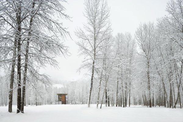 Delta Shelter in the snow. Photo by Benjamin Benschneider.