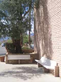 These benches shaded by an olive tree very ably capture the modern feel of the place with the bricks echoing the adobe building blocks of the region.