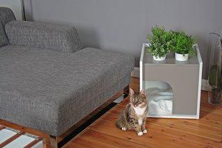 Pousse Creative's Pet Houses