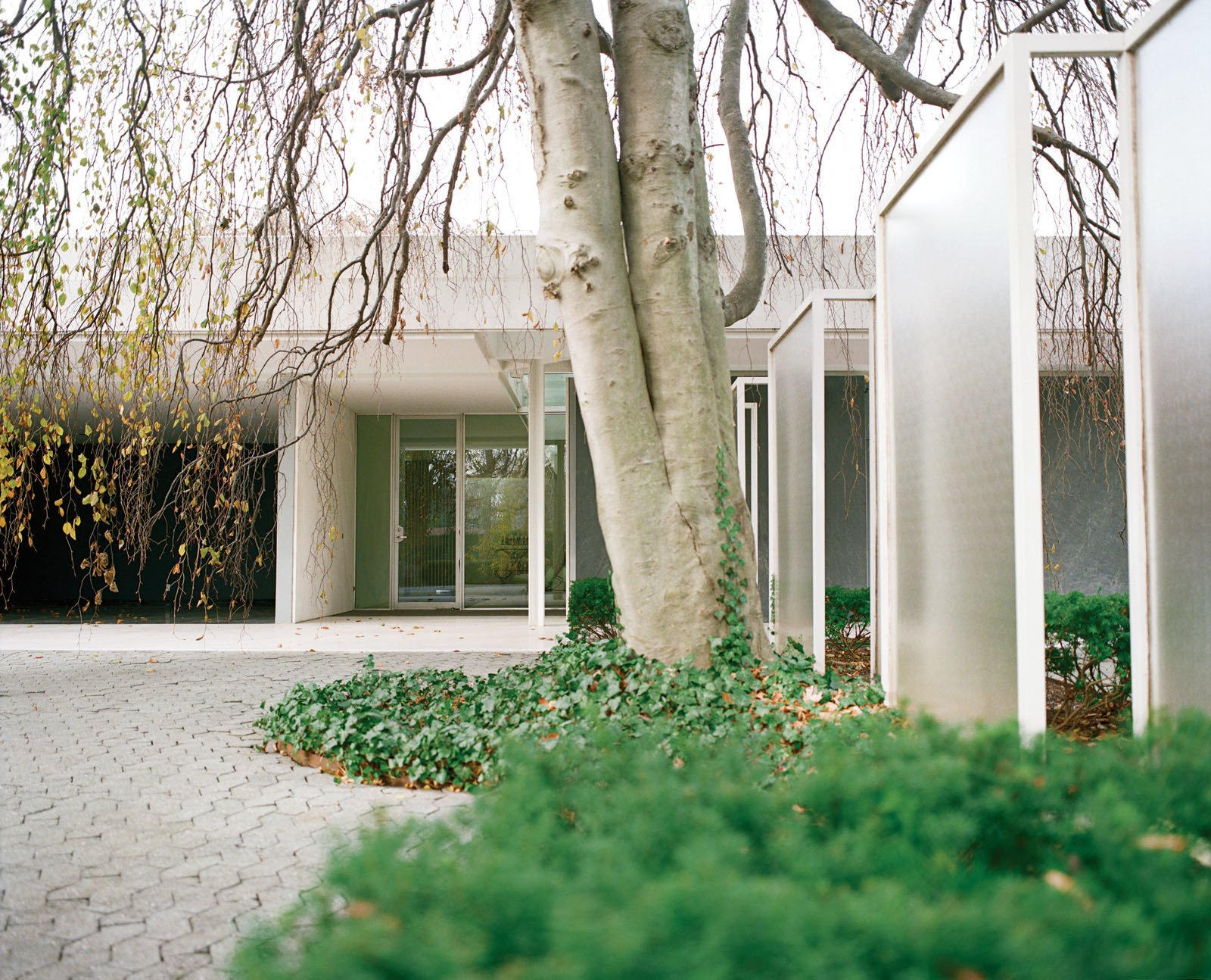 The front entrance of the Miller House is flanked by a series of glass screens, designed by either Dan Kiley or Girard.  Miller House in Columbus, Indiana by Eero Saarinen by Leslie Williamson from Why Columbus, Indiana, Should Be Your Next Design Destination