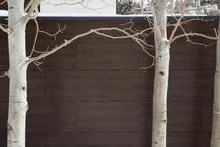 A sexy new material takes the place of traditional siding.