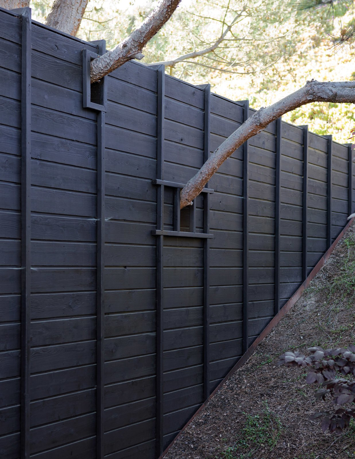 Outdoor, Wood Fences, Wall, and Horizontal Fences, Wall During construction, Mariscal's team adjusted the design to accommodate the boughs of an old pine tree in the backyard. The unique detail imbues the home with a spirit of wabi-sabi—or beauty through imperfection.  Photo 6 of 8 in Garden Guide: The Difference Between Hardscape and Softscape from An Atypical Modern Home in Southern California