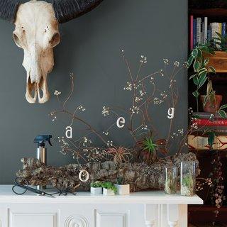 5 Stylish Home Gardening Tools