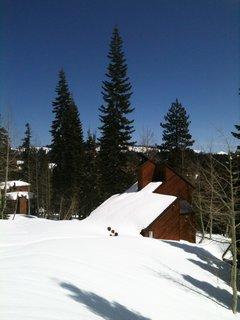 Snow in Bear Valley