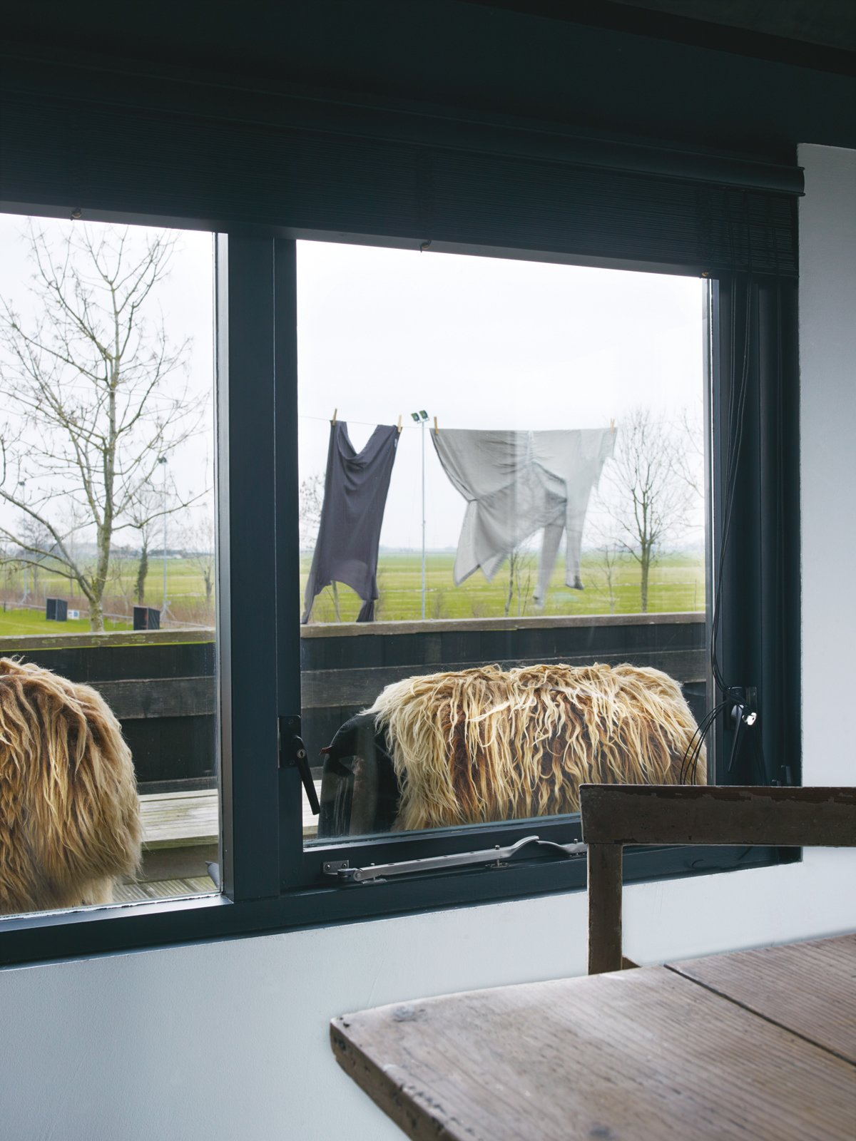 Paula Leen and Kees Middendorp lived in their home for 16 years before they finally purchased and renovated it.  Photo 4 of 15 in Rural Home on a Holland Harbor