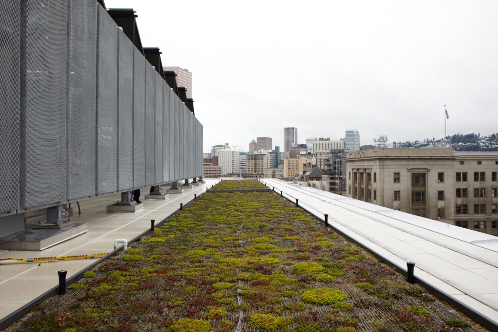 """A living roof is among the project's many green features.  Search """"commons grounds"""" from Commons' Grounds"""