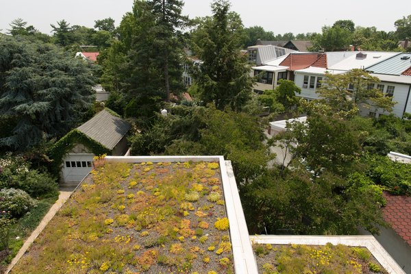 The sedum plantings come from nearby Emory Knoll Farms, the only nursery in North America to focus solely on propagating plants intended for green-roof systems.
