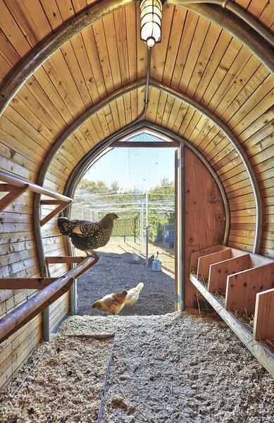 """The relatively spacious interior of the 60-square-foot coop came after the ARO architects delved in the literature, so to speak, and took time to examine the problem. """"We made a project that works well for the birds, that's our obligation,"""" says Cassell."""