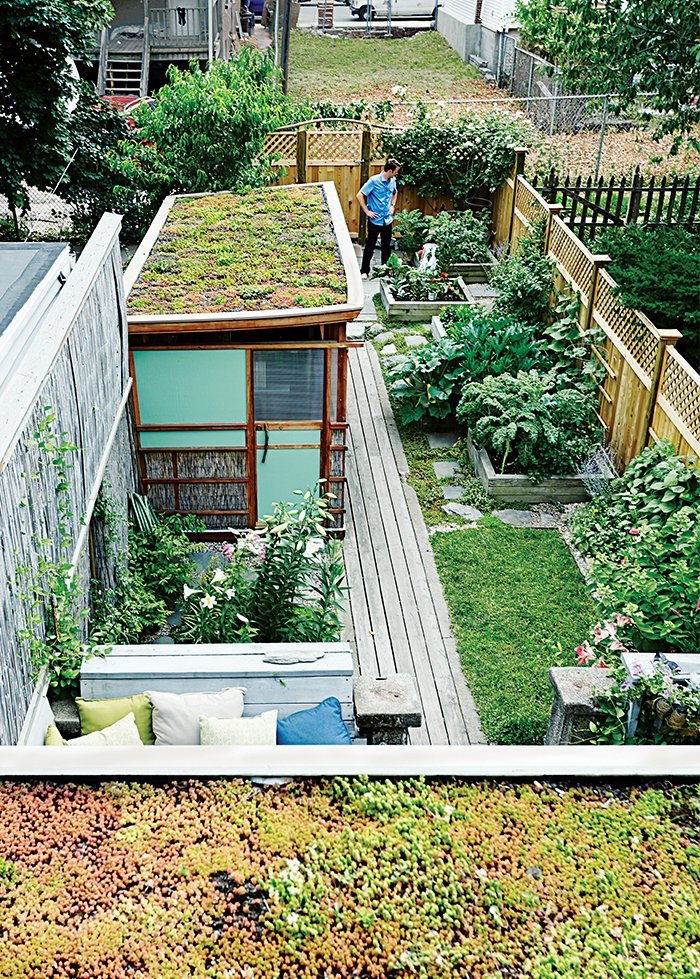 Outdoor and Back Yard The backyard sports a sequence of raised flower and vegetable beds and two green roofs—one atop the workshop and other atop the back entrance.  Architecture from Run-Down Row House in Boston Becomes a Quiet Urban Escape with Two Green Roofs