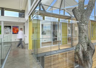 The stacked containers and inner courtyard, which wrap around a cedar tree, allow for plenty of natural sunlight, which helps illuminate the client's work on display in the main gallery space.