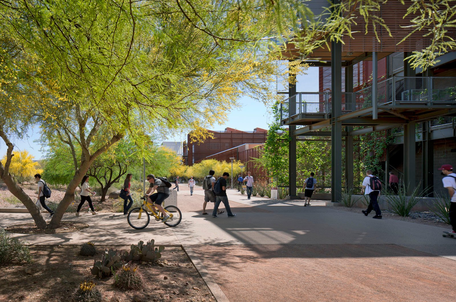 Arizona State University's Polytechnic Campus.  Photo 10 of 11 in 11 Innovative and Modern Schools Where Creativity and Good Design Rule from Sustainable Strides in Today's Architecture