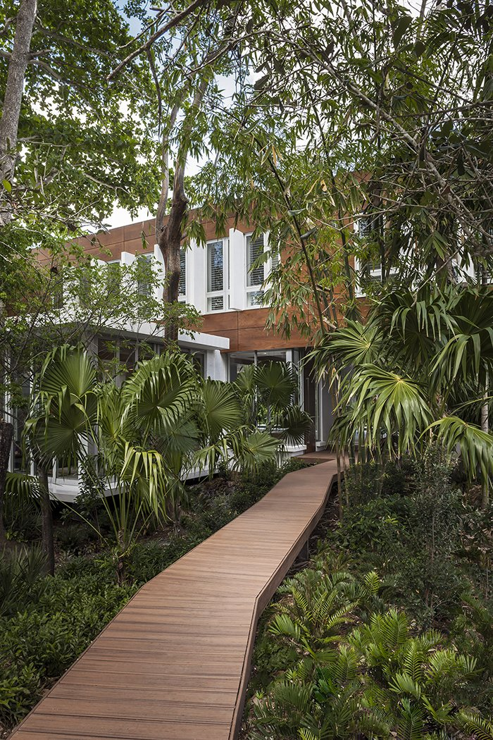 A wooden boardwalk twists through the verdant site.  Photo 2 of 12 in This Modern Miami House Feels Like It's in the Middle of the Jungle