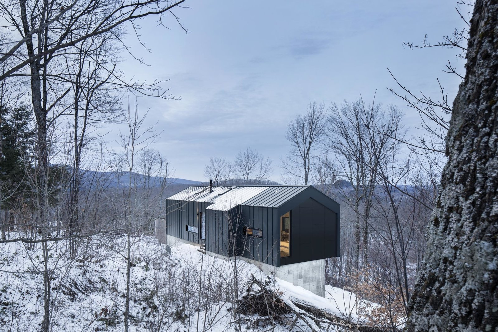 "Trees, Slope, Exterior, House, Metal, and Metal The home's geometric silhouette echoes the classic typology of the region's gable roof barns. ""We took our inspiration from this vernacular architecture and re-interpreted it with a contemporary twist,"" Dworkind says.  Best Exterior Trees Photos from Amazing Cantilevered Home in the Mountains"