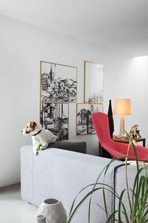 Ibbel, a Parson Russell terrier, and his tennis ball survey the living room from the back of a Cuba sofa by Rodolfo Dordoni for Cappellini. The framed drawings are by Poorter and Holdrinet.