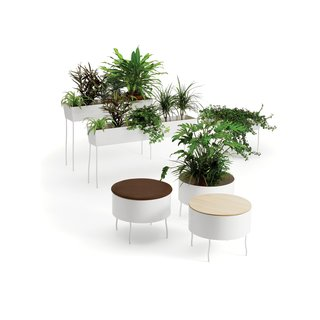 Thin legs, thick foliage, and an entirely Swedish take on the indoor planter: Stick a cover on top and this prime place for greens becomes a sweet spot for rear ends. Click here for more information on these Green Pedestals.