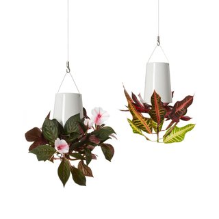 These ceramic planters hang from the ceiling, so there's no need to take up precious counter space. Click  here for more information on these upside down planters.