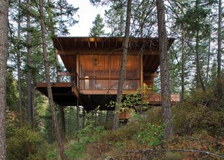 Modern in Montana: a Flathead Lake cabin that's a grownup version of a treehouse.