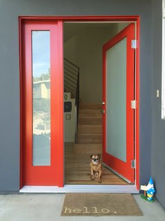 Photo of the Week: A Door and a Dog to Welcome You Home