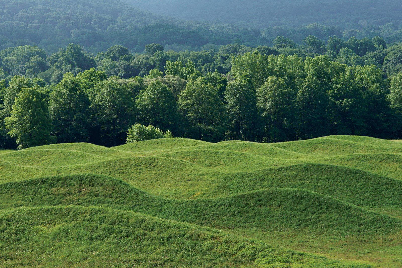 Rows of rolling earth comprise the 2009 Storm King Wavefield, the artist's largest site-specific installation.  Photo 4 of 8 in Q&A with Architectural Designer and Artist Maya Lin
