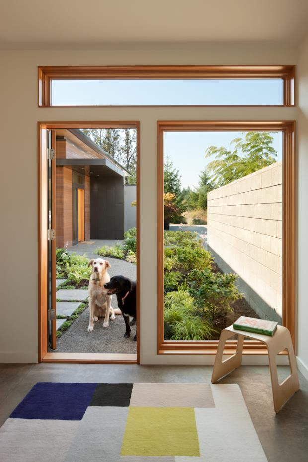 The dogs of the house enjoy the courtyard off the private home office.  Photo 10 of 11 in Modern in the Country