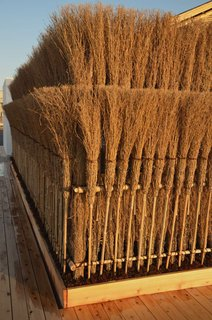 "The fence is made from bamboo brooms. Why? ""They're cheap and ready-made,"" Sugimoto said."