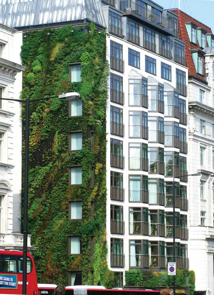 Exterior and Green Siding Material London's Athenaeum Hotel near Hyde Park features a side living wall designed by well, you guessed it, Patrick Blanc. (Pin).  Photo 10 of 10 in Living Green Walls 101: Their Benefits and How They're Made from Day of the Living Wall