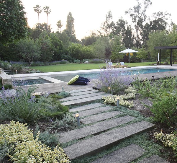 For a Los Angeles home, Aoyagi used an IdealMow lawn of native grasses, and Dymondia, Juncus, and Hummingbird Sage.