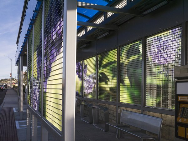 Vitex flora adds a fanciful lavender shade to this urban Mesita bus shelter. Introduced October 2014, Leaves of Wind is a series of twenty public art installations incorporated into transit shelters on El Paso's Mesa corridor of the new Brio Rapid Transit System.