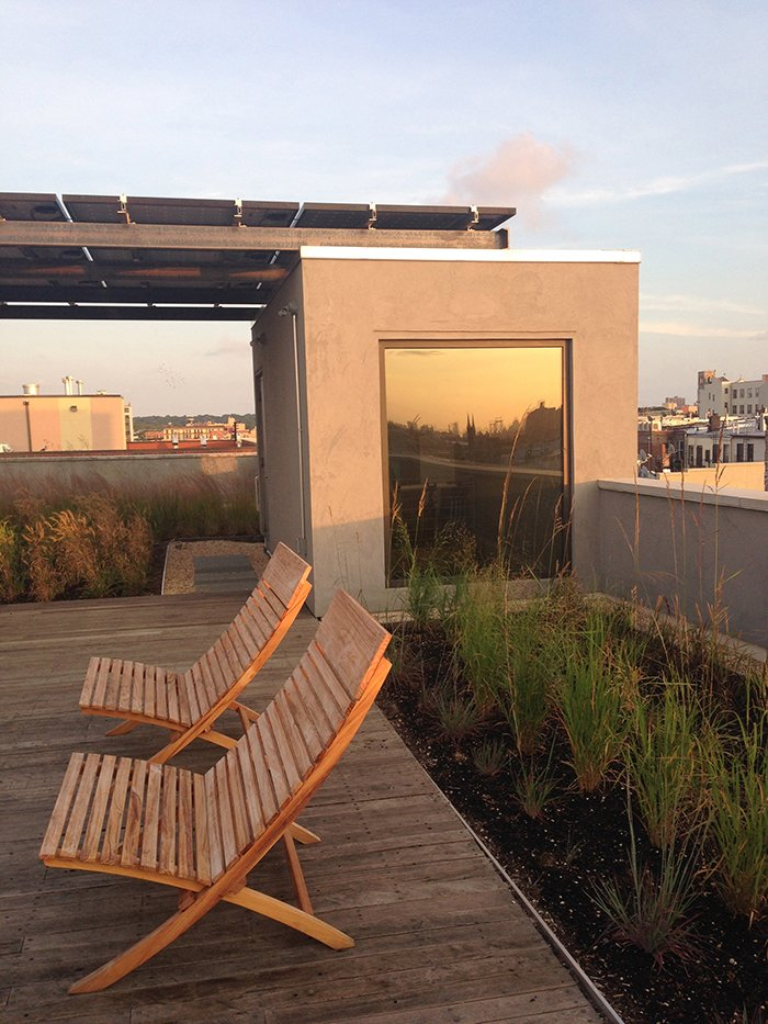 The roof is planted with native meadow grasses and features an impressive solar array.  Photo 9 of 10 in Get an Advance Look at the Amazing Residences on Dwell's Brooklyn Home Tour