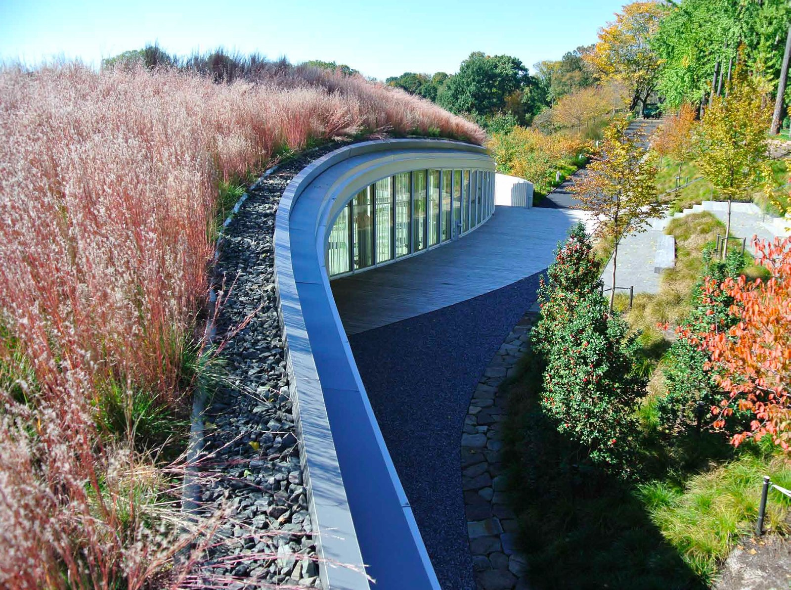 HM White Site Architects' landscape design atop the roof of the Brooklyn Botanic Garden Visitor Center allows the garden environment to remain the focal point of the grounds. Photo courtesy of HM White Site Architects.  New York Landscape Architects Design Awards by Sara Carpenter