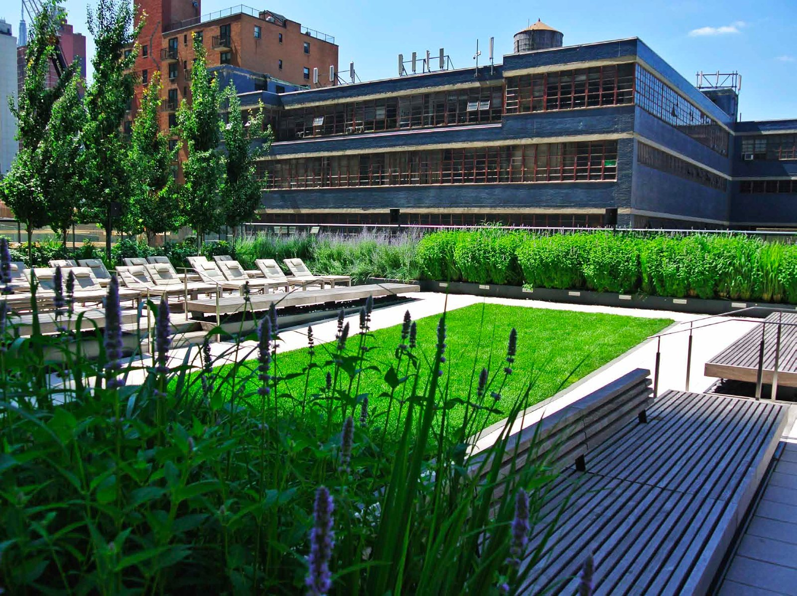HM White Site Architects used the MiMA roof terraces to link interior amenity spaces and create green respites in the middle of Times Square. Green roof technology, thermal battery protection, storm water absorption and drought tolerant native plants helped the project earn Gold LEED certification. Photo courtesy of HM White Site Architects.  New York Landscape Architects Design Awards by Sara Carpenter